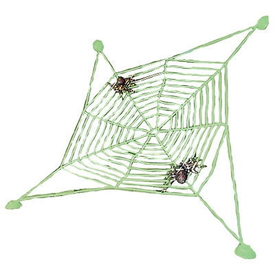 Spiderweb with 2 spiders