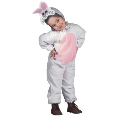 Costume rabbit