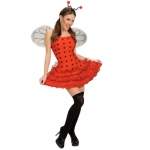 Ladybug dress Dress, wings, antennas