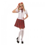 School girl dress Skirt, shirt, necktie, hair ribbons