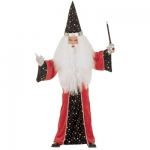 Wizard costume Robe, hat
